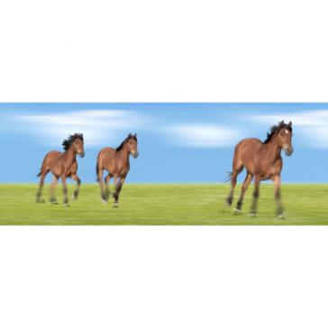 Horses Bookmark