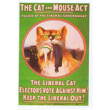 Cat & Mouse Act