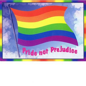 Pride not prejudice flag
