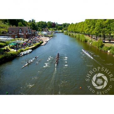 Shrewsbury rowing