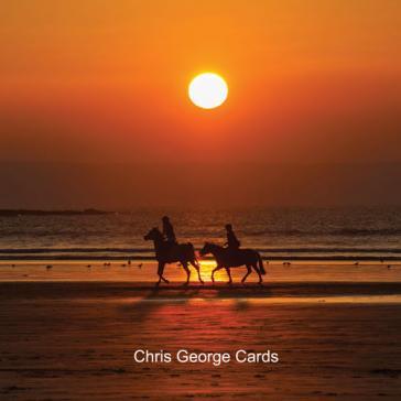 Ponies on beach