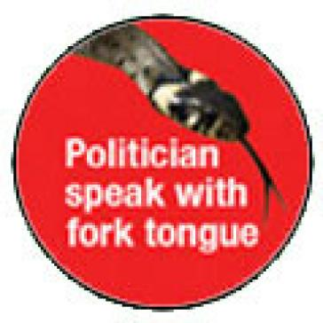 Politician badge